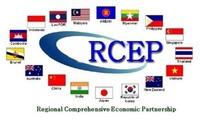 Werte der starken Sektoren im RCEP-Abkommen fördern