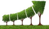 Aufbau einer nationalen Strategie für grünes Wachstum 2021-2030