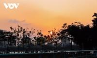 Schönheit Hanois bei Sonnenuntergang am Westsee