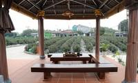 Thai Nguyen baut Marke Tan Cuong-Tee für Tourismus-Entwicklung auf