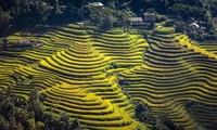 """Einstellung der Kultur-und Tourismuswoche """"Durch Regionen-Erbe der Reisterrassen in Hoang Su Phi"""""""