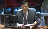Vietnam nimmt an Sitzung des Weltsicherheitsrates über Sicherheitslage in Kongo und Golanhöhen teil