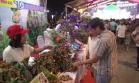 Hanoi will im November Früchte-Festival veranstalten