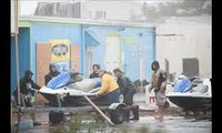 Super storm Sandy: At least 40 people dead