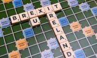 Theresa May ofrecerá a los irlandeses su libre circulación por las islas británicas
