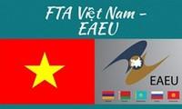 Ayudan a inversionistas holandeses a conocer más sobre el entorno de negocios en Vietnam