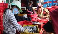 Parlamentarios vietnamitas revisan la Ley de Acuicultura