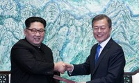 Corea del Norte cancela su cumbre con el Sur