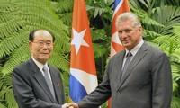 Cuba y Corea del Norte acuerdan ampliar diálogo político y la cooperación