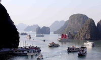 Fortalecen la protección ambiental en la bahía de Ha Long y el archipiélago de Cat Ba