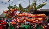 Países asiáticos celebran Año Nuevo Lunar del Cerdo