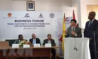 Vietnam y Mozambique promueven cooperación en inversión, comercio y turismo