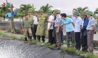 Chequean trabajos de superación de secuelas de tifón Wipha en Hai Phong
