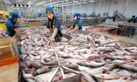 Estados Unidos reconoce sistema de seguridad alimentaria de siluros de Vietnam