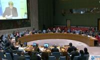 Vietnam listo para ayudar a otros países en el período de transición después de un conflicto