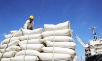 Productividad de arroz en delta del río Mekong será de 3 millones de toneladas