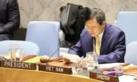 Vietnam afirma apoyo a verificación de la paz en Colombia