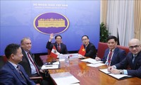 Celebran la cuarta Consulta Política Vietnam-Perú
