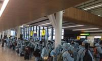 Repatriación de más de 300 ciudadanos vietnamitas desde Reino Unido