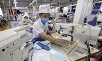 Periodistas extranjeros aprecian los logros de Vietnam en el proceso de Renovación