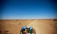Vietnam exhorta a las partes concernientes a abstenerse de acciones que aumenten las tensiones en el Sáhara Occidental