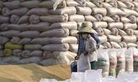 Aumentan exportaciones agrosilvícolas y acuícolas de Vietnam