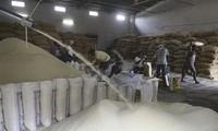 FAO y OCDE pronostican una disminución de los precios mundiales de los alimentos durante la próxima década