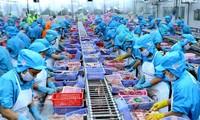Recuperación económica: crecen las exportaciones vietnamitas en 2021