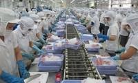 Impacto positivo del EVFTA en las exportaciones de productos acuícolas de  Vietnam