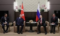 Presidentes de Rusia y Turquía mantienen conversaciones sobre la situación en Siria
