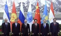 OCS orienta hacia una cooperación integral