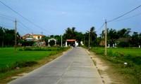 Cambio de fisonomía en Quang Nam gracias al Programa de nuevo campo