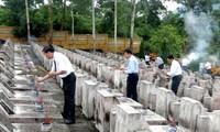 Enaltecedoras actividades conmemorativas al Día de los Mártires y Mutilados de Vietnam