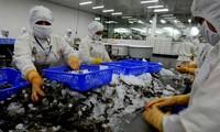 Protesta Vietnam injusta imposición por Estados Unidos de gravámenes a camarón congelado
