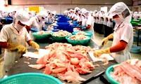 Vietnam protesta gravémenes de Estados Unidos a pescados sin escama