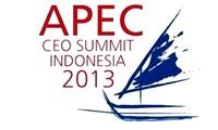 Efectúan reuniones previas a Semana del Foro de Cooperación Económica Asia-Pacífico