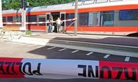 Swiss train attack suspect dies