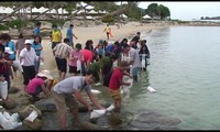 Environmental protection activities launched as part of Nha Trang Sea Festival