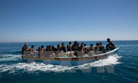 Egypt foils attempt of smuggling people to Europe