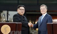 South Korea, Russia support trilateral cooperation with North Korea