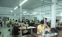 Vietnamien des affaires: leçon 24: location de machines et d'équipements