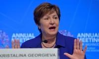 IMF ready to mobilize 1 trillion USD loan capacity to fight coronavirus