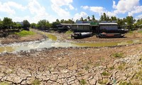 Ca Mau province hit by severe drought