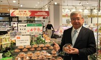 Vietnamese fresh lychee for sale for first time at Japanese supermarkets