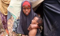 UN says 3.5 million people face acute food insecurity in Somalia