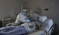 COVID-19: Nearly 738 deaths worldwide