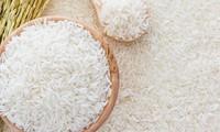 EU 수출 쌀 품종 인증 규정