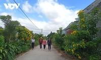 떠이응우옌 (Tây Nguyên) 고원마을의 변모