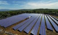 유행에 따른 태양광 발전 제한