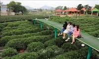 타이응우옌, 동북 산악 및 구릉지대, 관광 중심지가 되도록 노력